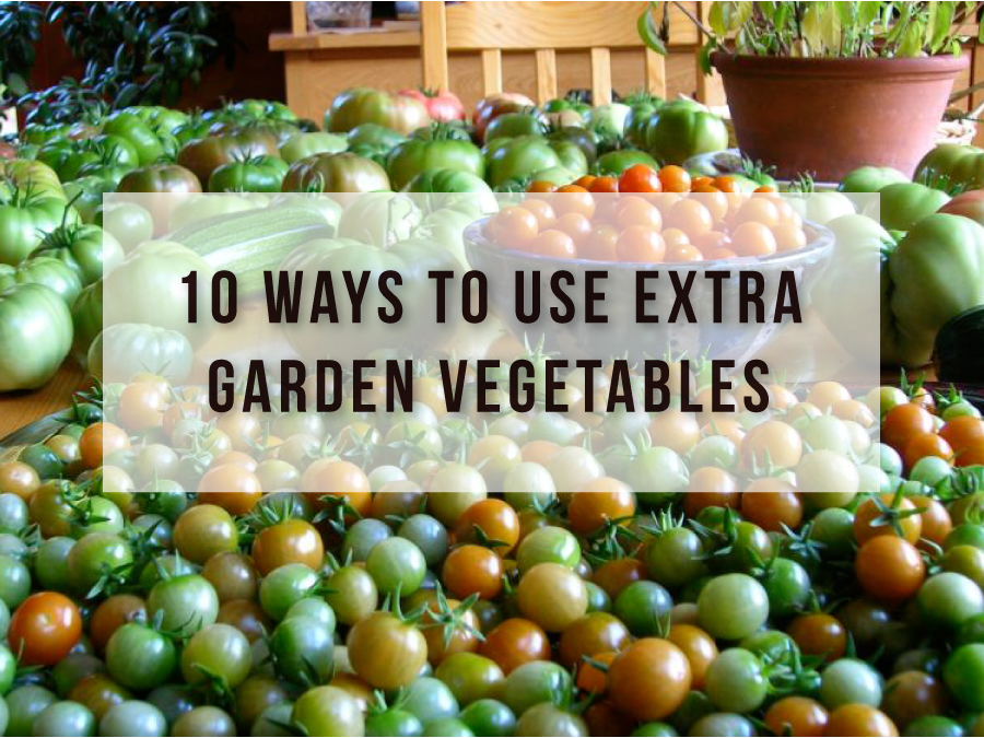 10 Ways to Use Extra Garden Vegetables